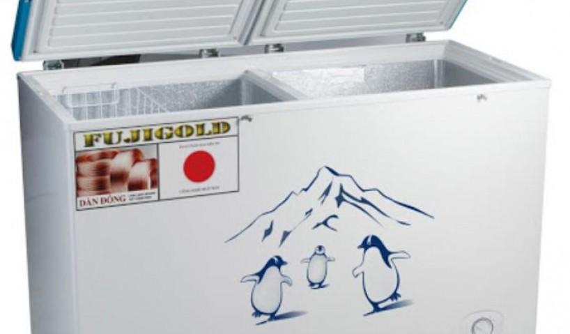 Top 8 mẫu tủ đông 2 ngăn phổ biến hiện nay