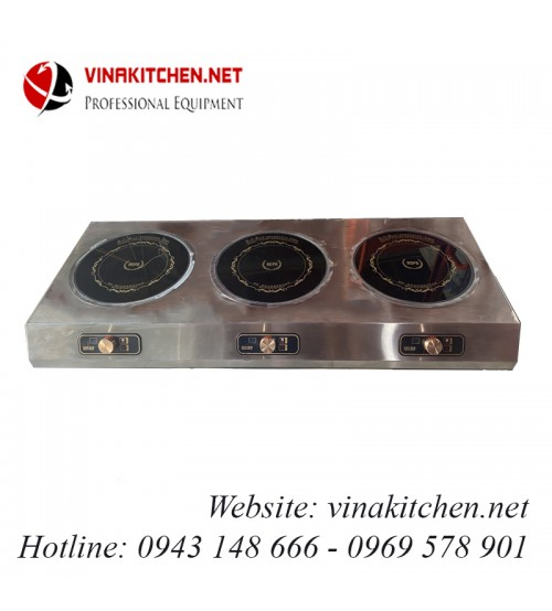 Bếp từ công nghiệp vinakitchen 3x3KW