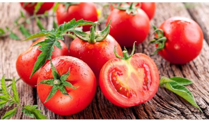 Tất tần tật các cách bảo quản cà chua đơn giản, đúng chuẩn