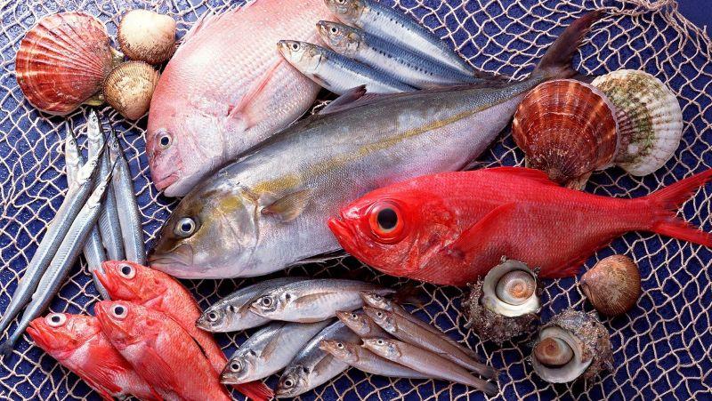 Hình 3: Rã đông cá bằng giấm